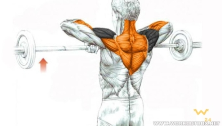 barbell_upright_row